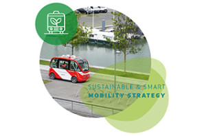 mobility-strategy